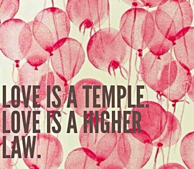 love is the higher law david levithan epub
