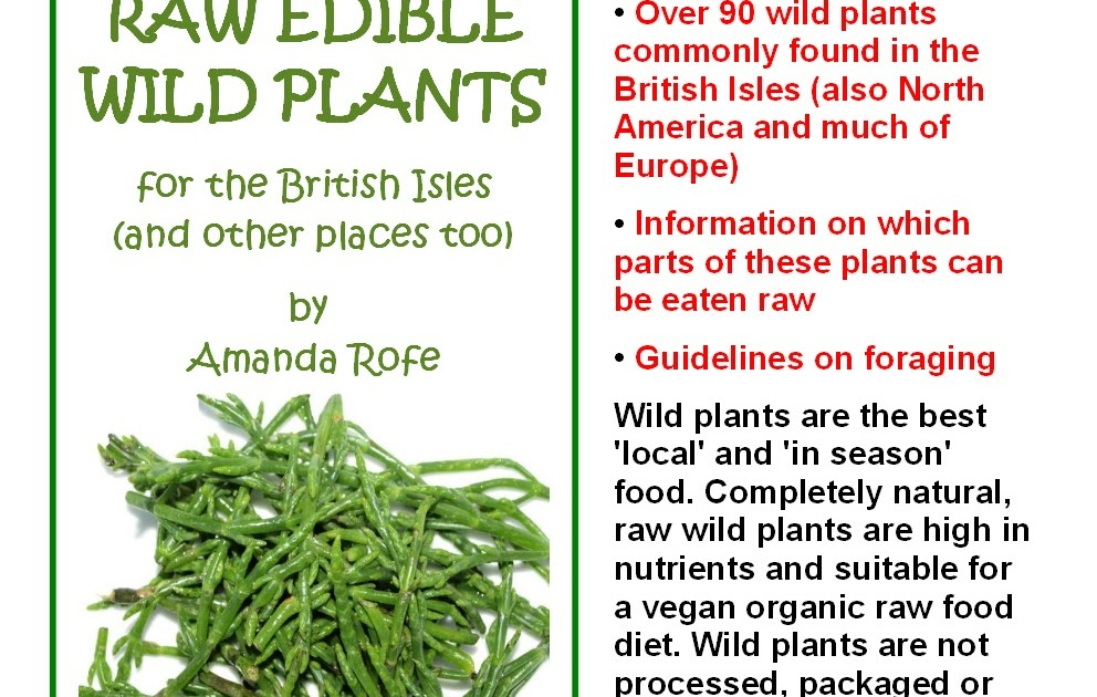 wild edible plants of canada ebook