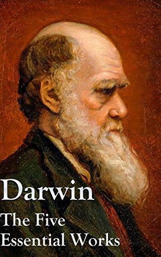 descent of man darwin ebook