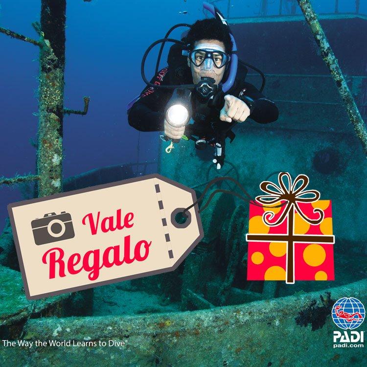 padi open water diver manual ebook